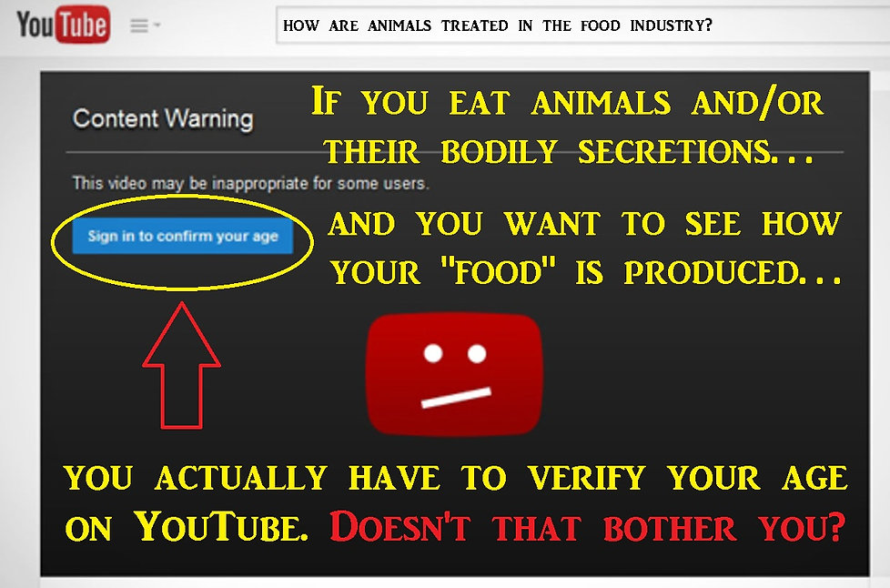 6 You Tube Content Warning.jpg