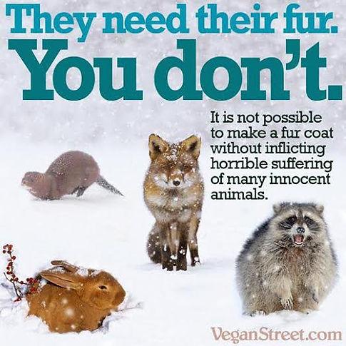 Fur Coat Suffering