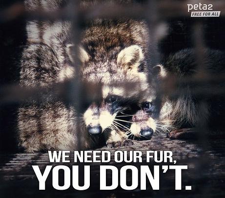 Fur Animal Cruelty