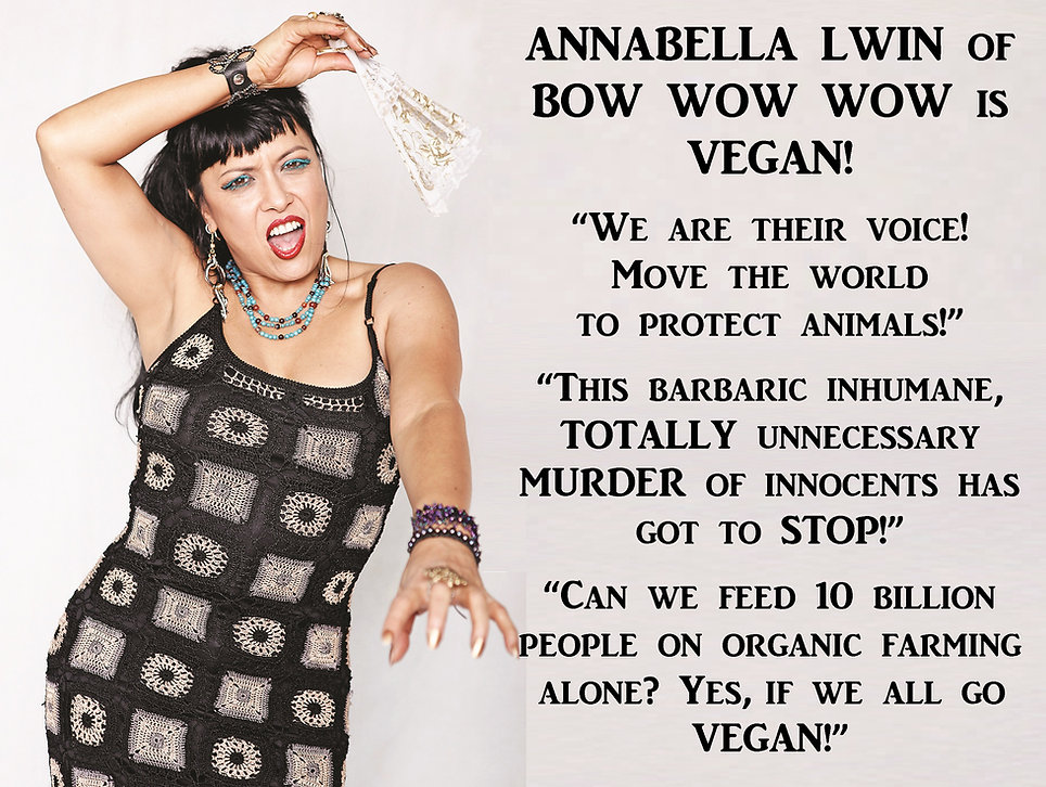 Vegan Bow Wow Wow