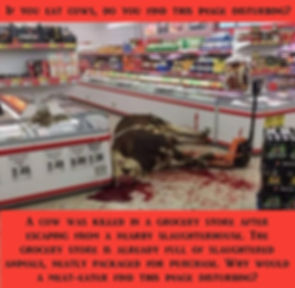 6 Slaughtered Cow in Grocery Store.jpg