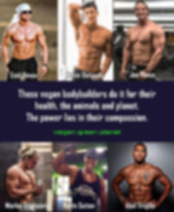 Vegan Bodybuilders