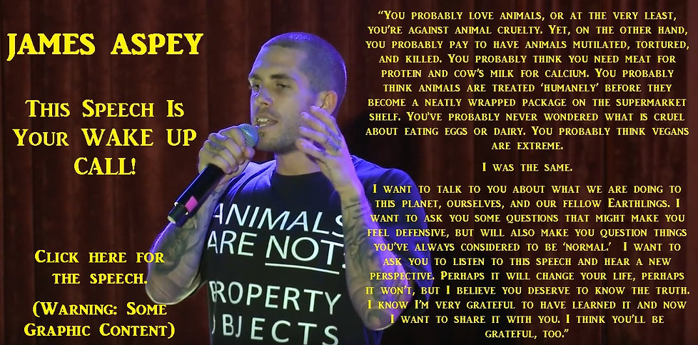 Vegan activist James Aspey