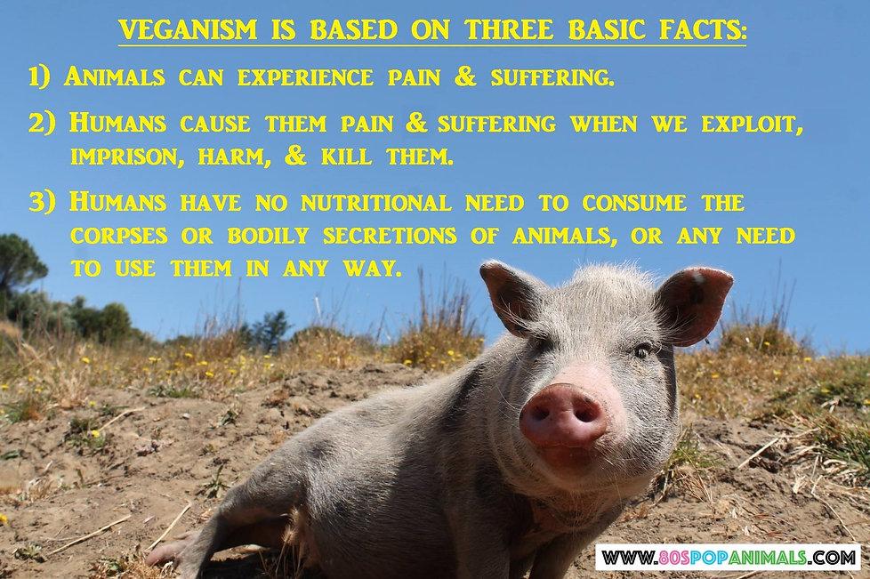 Vegan Veganism