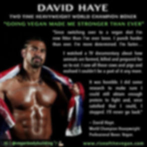 Vegan Athlete David Haye