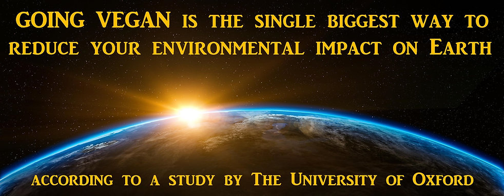 Oxford University Study Vegan Environment