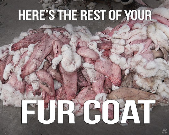 Fur Coat Cruelty