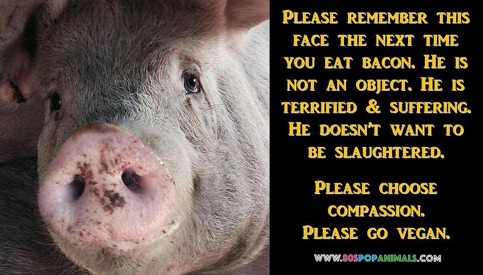 Bacon Pork