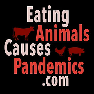 https://www.eatinganimalscausespandemics.com/