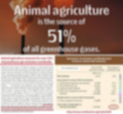 Animal Agriculture Greenhouse Gases