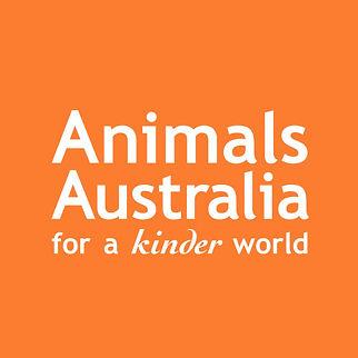 Animals Australia.jpg