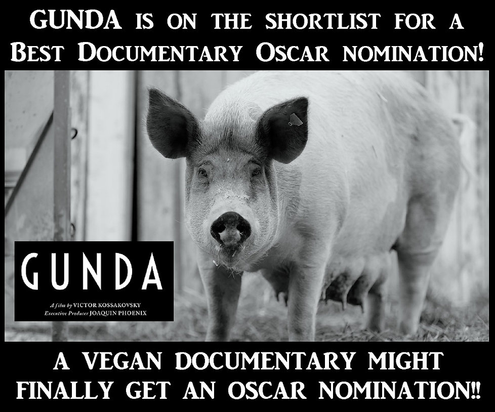 GUNDA Oscar Documentary