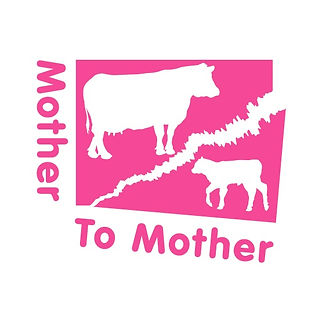 Mother To Mother.jpg