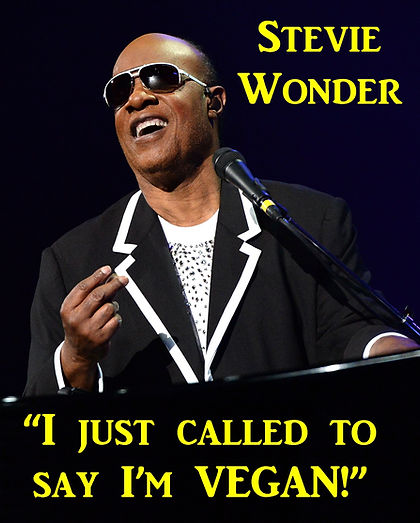 Vegan Stevie Wonder
