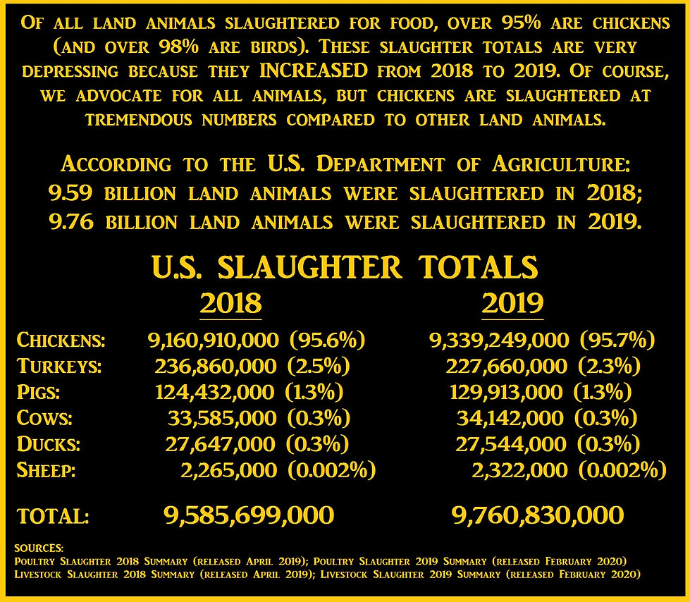 Slaughter Totals