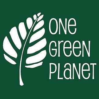 Vegan climate change environment