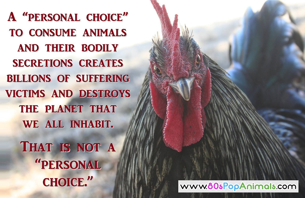 Personal Choice To Eat Animals