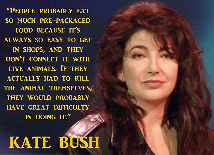 2 Kate Bush 2.jpg
