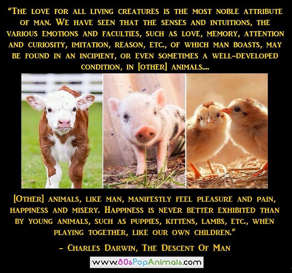 Charles Darwin Animals