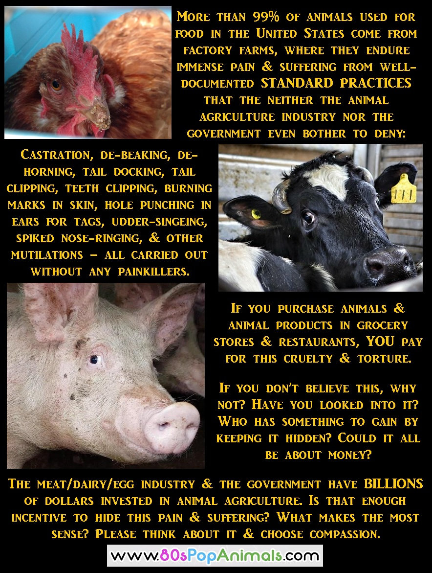 Animal Agriculture Standard Practices