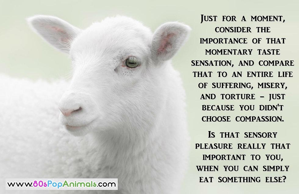 Choose Compassion Vegan