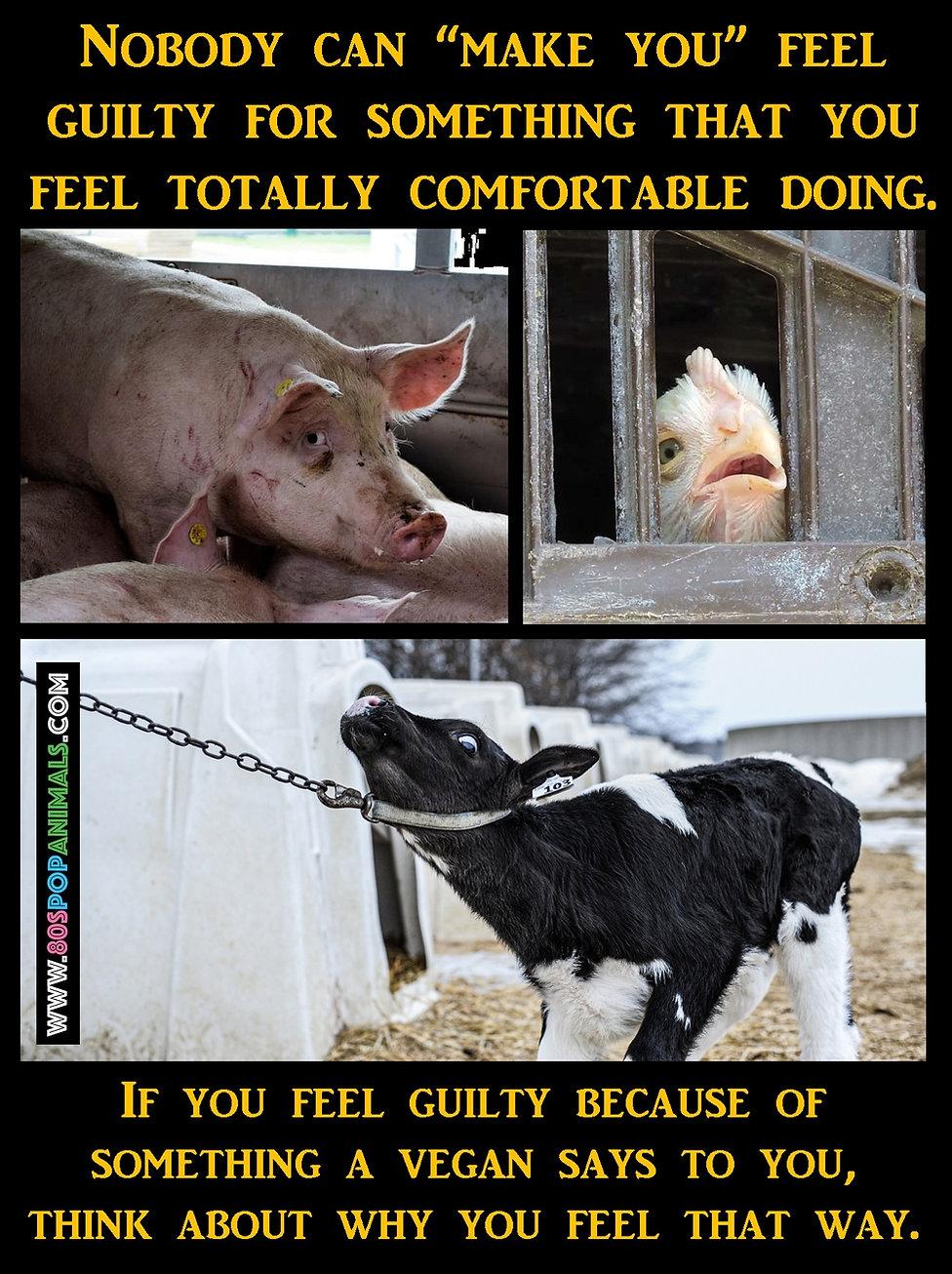 Vegans Guilty