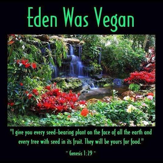 Vegan Christianity Genesis Eden