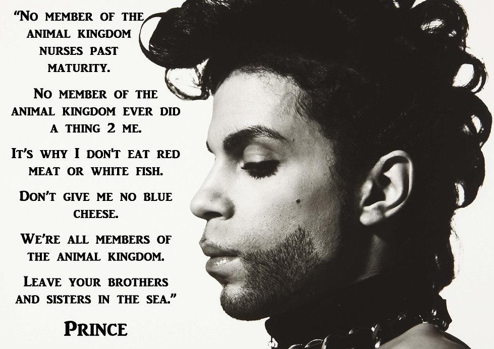 Prince Go Vegan