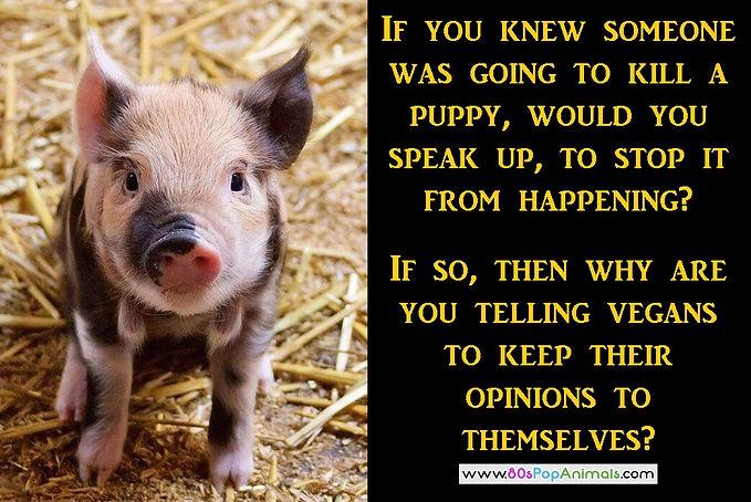 Shut-up Vegans