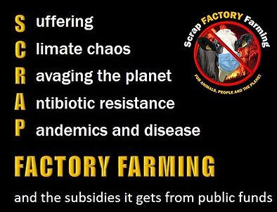 SCRAP Factory Farming.jpg