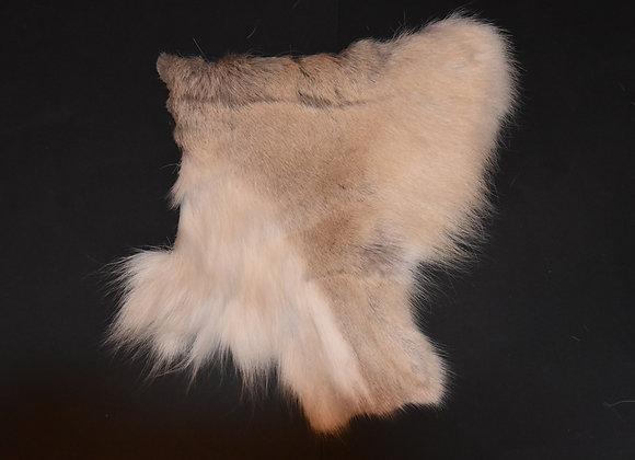 Reindeer skin sections 27/Abschnitt von Rentierfell 27