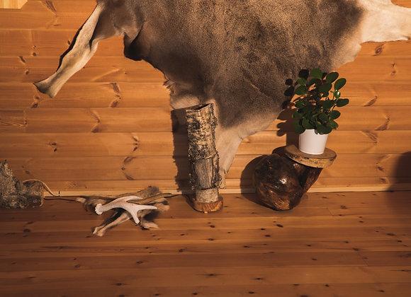 Wooden floor lamp ▸ exceptional natural light 2