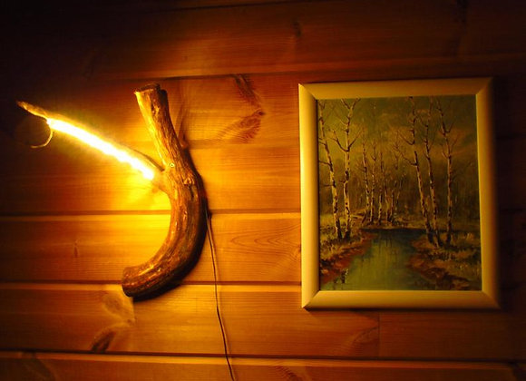 wooden root wall lamp ▸ made of juniper with LED
