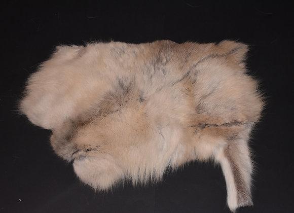 Section of Reindeer Skin 36/Abschnitt von Rentierfell 36