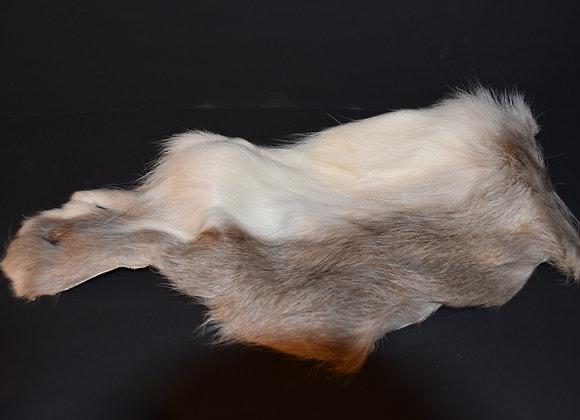 Reindeer skin sections 20/Abschnitt von Rentierfell 20