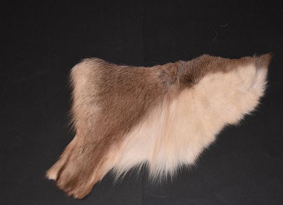 Reindeer skin sections 28/Abschnitt von Rentierfell 28