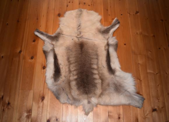 cuddly reindeer hide ▸ from Finland 7