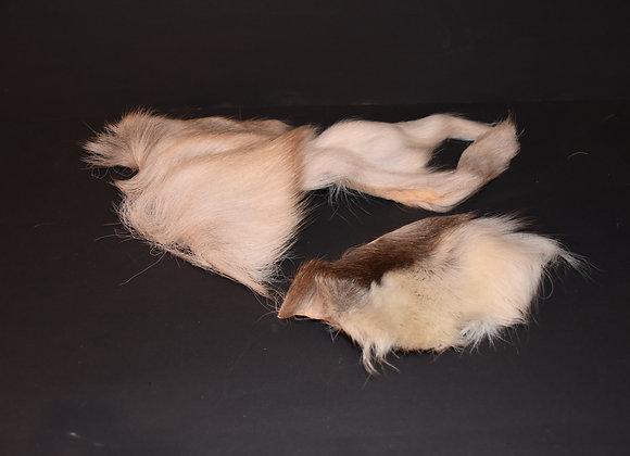 Reindeer skin sections 25/Abschnitt von Rentierfell 25