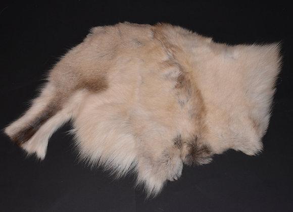 Reindeer skin sections 33/Abschnitt von Rentierfell 33