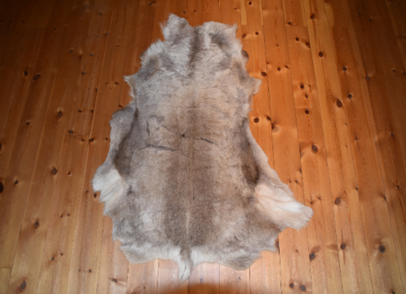 cuddly reindeer hide ▸ from Finland 6