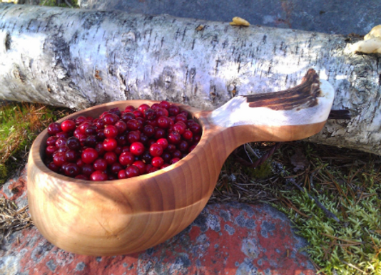 Real organic cranberries ▸ wild from Lapland