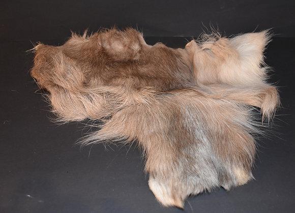 Reindeer skin sections 26/Abschnitt von Rentierfell 26