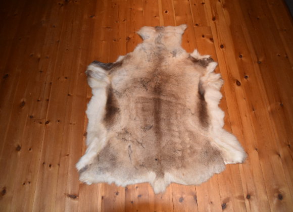 cuddly reindeer hide ▸ from Finland 8