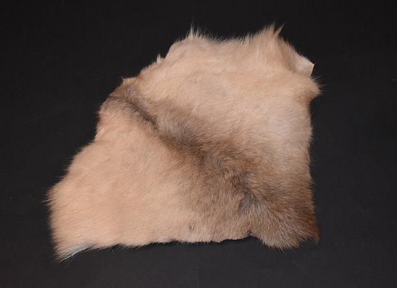 Reindeer skin sections 32/Abschnitt von Rentierfell 32