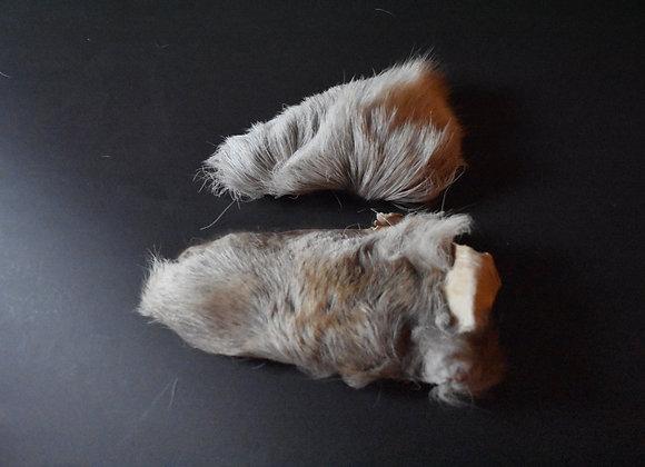 Reindeer skin sections 12/Abschnitt von Rentierfell 12