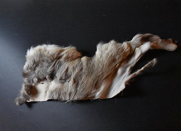Reindeer skin sections 9/Abschnitt von Rentierfell 9