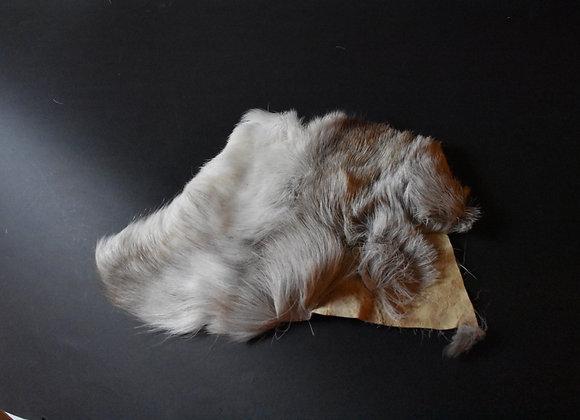 Reindeer skin sections 10/Abschnitt von Rentierfell 10