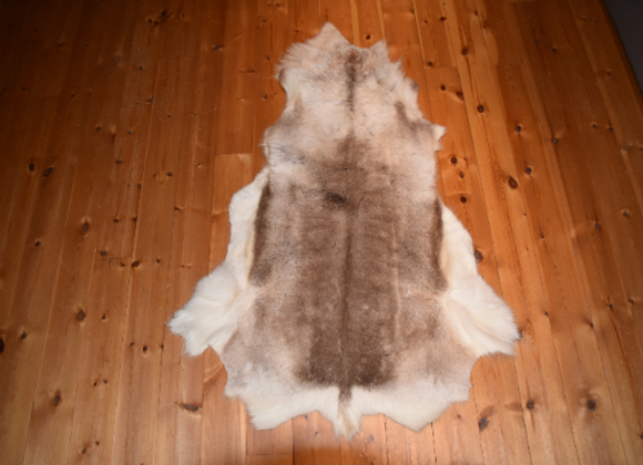 cuddly reindeer hide ▸ from Finland 7
