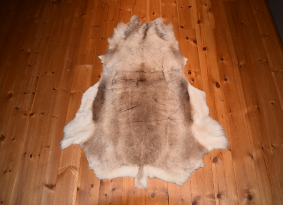 cuddly reindeer hide ▸ from Finland 4