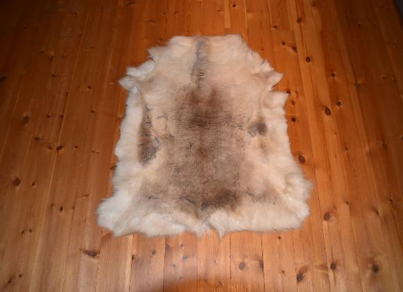 cuddly reindeer hide ▸ from Finland 10